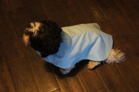 WATERPROOF DOG COAT BABY BLUE 16-18""